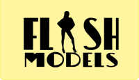 Flash Models